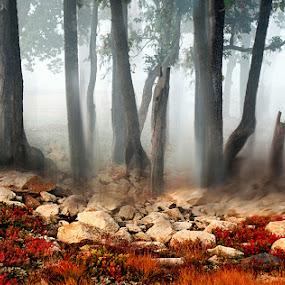 Mist by Kaushik Dolui - Landscapes Travel ( nature )