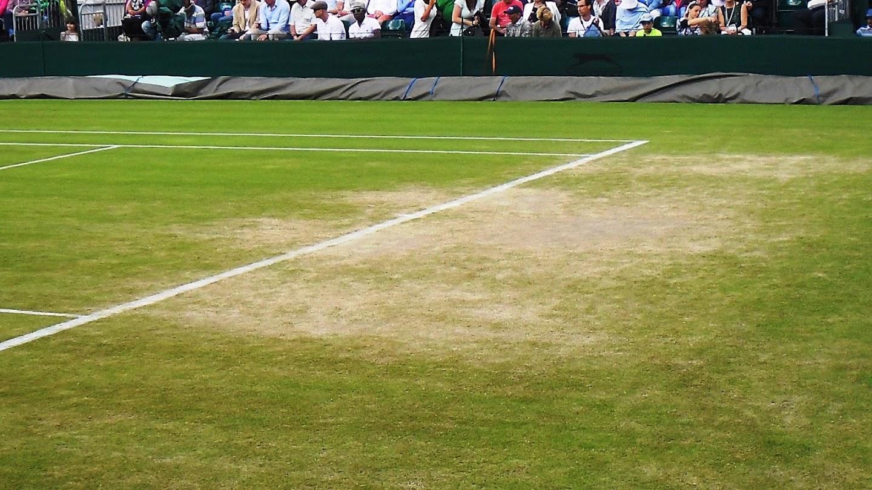 Wimbledon Classics