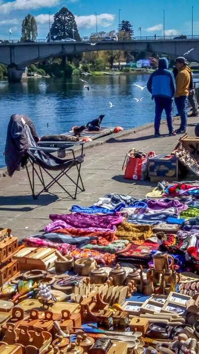 valdivia+fluvial market+chile.jpg