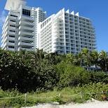 canada in Miami in Miami, Florida, United States