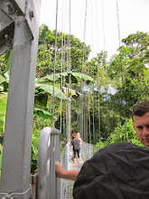 Photo: Arenal hanging bridges