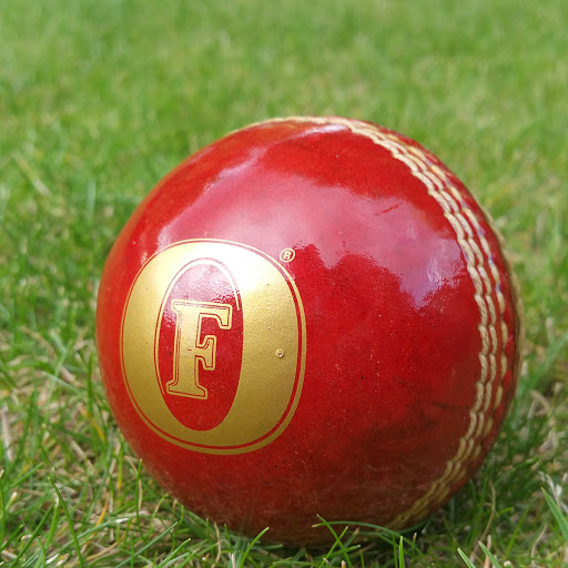 Promotional Branded Cricket Balls