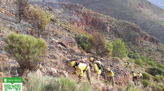 La caída de un rayo origina un incendio forestal en Terque