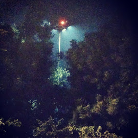 The poetry of Earth by Nidhi Dass - City,  Street & Park  Night ( #photography #street #light #nature #serendipity )
