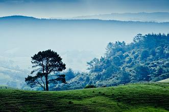 Photo: New Zealand 2011
