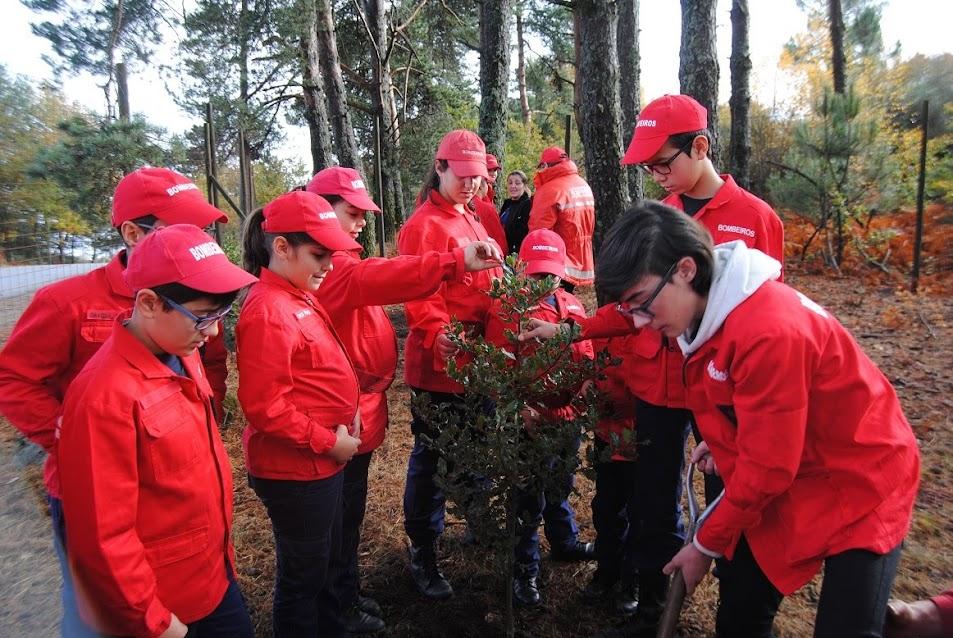 Escola de Infantes e Cadetes dos Bombeiros de Lamego: Plantando o Futuro