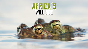 Africa's Wild Side thumbnail