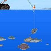 바다 찌낚시 게임