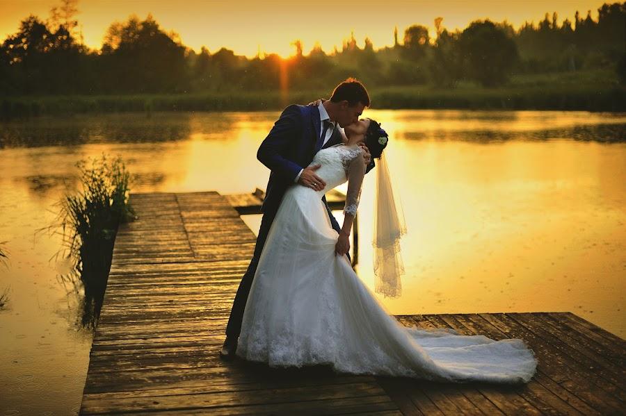 Wedding photographer Igor Shevchenko (Wedlifer). Photo of 21.01.2016