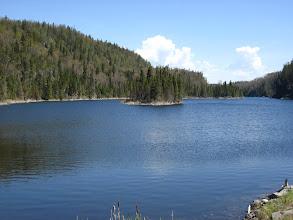 Photo: Göllerde adacıklar ve üstünde ağaçlar!
