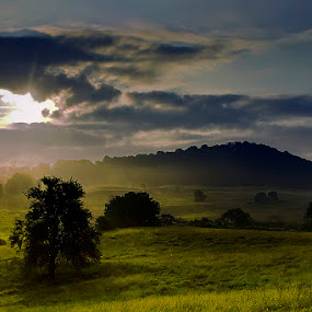In the morning by Ionut Stoica - Landscapes Prairies, Meadows & Fields ( hills, summer, romania, morning, light, sun, mist )