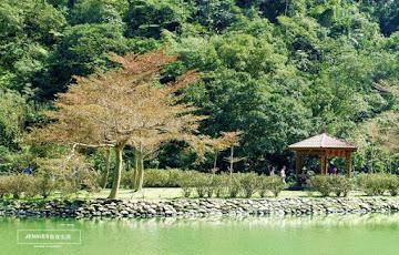 望龍埤花田村湖畔咖啡