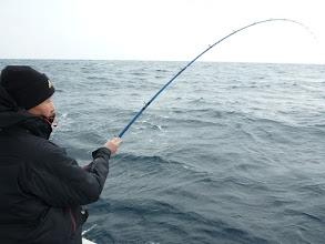 Photo: 「全速巻き」でサメに食われないように!!