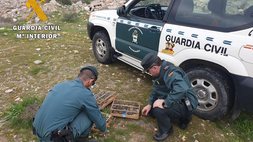 La Guardia Civil con las aves intervenidas.