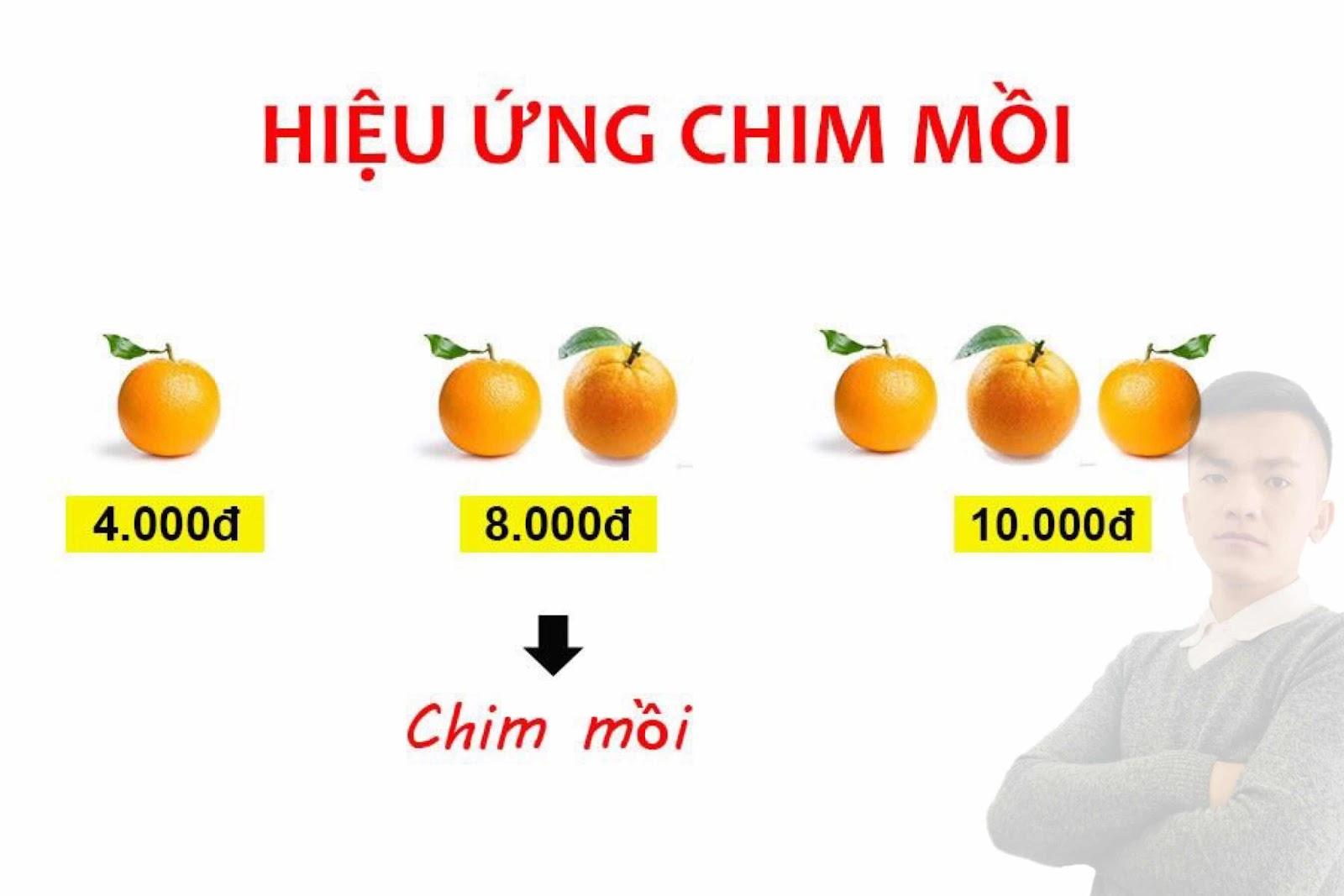 """HIỆU ỨNG """"CHIM MỒI"""" TRONG MARKETING - BẠN BIẾT GÌ VỀ NÓ??? ~  blogkienvy.blogspot.com"""