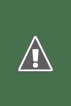 Poster True Legend
