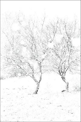 inverno di MaxMax