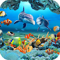 Fish Live Wallpaper 3D Aquarium Background HD 2021 icon