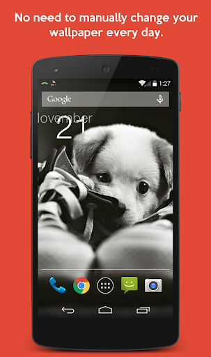 Puppies Every Day Wallpapers