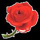Flower stickers - WAStickerApps Download on Windows