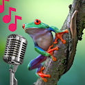 Tree Frog Sounds icon