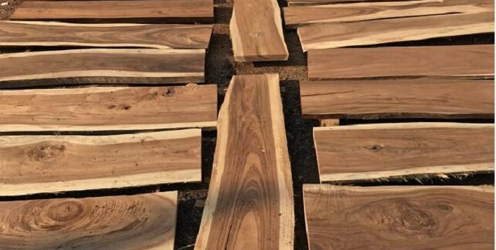 jenis kayu