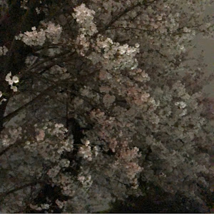 クラウンアスリート AWS210のカスタム事例画像 まこと(ゆいまーる)さんの2020年03月31日21:31の投稿