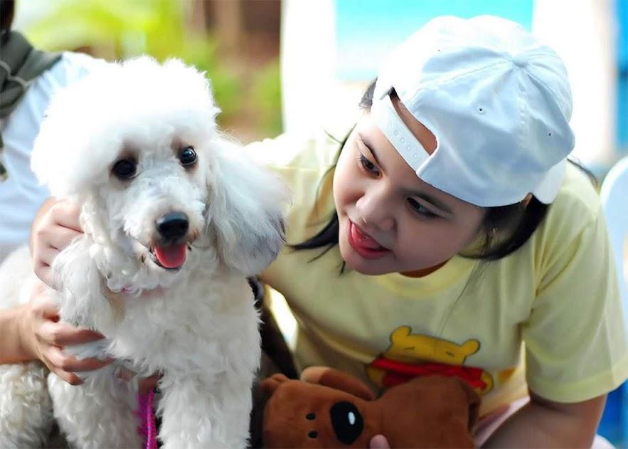 Hablemos sobre los perros de asistencia y de terapia