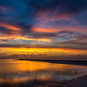 Serene Sunrise  by John Chitty - Landscapes Sunsets & Sunrises ( corpus christi, serene, texas, seascape, sunrise, landscape )