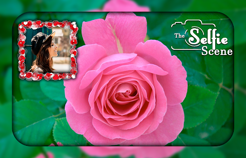 Download Pink Rose Photo Frames For PC Windows and Mac apk screenshot 3
