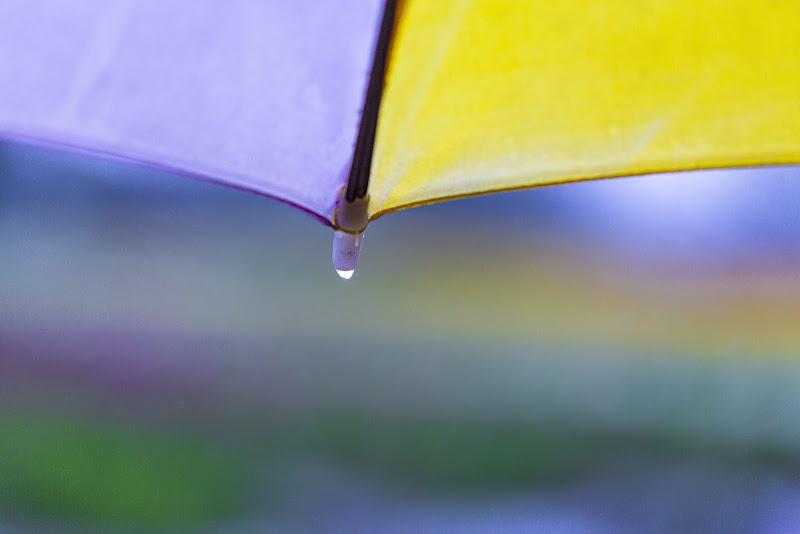 Rain...bow di Tindara