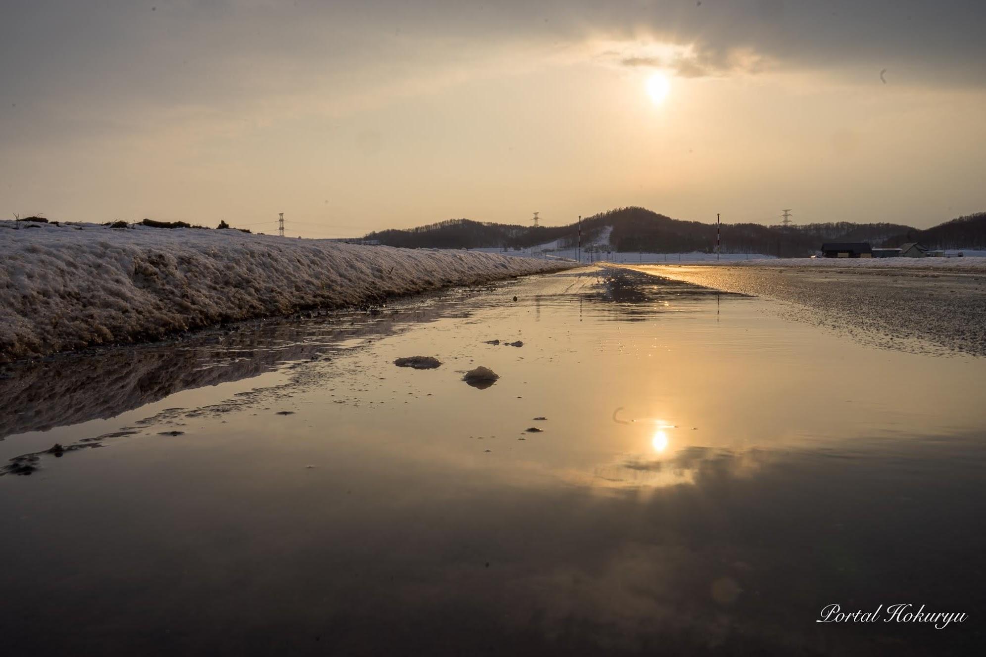 道路に映る冬の太陽