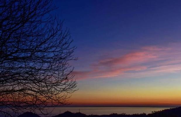 tramonto solitario  di Andre76