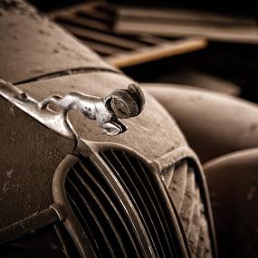 Ram by Shaun Schlager - Transportation Automobiles ( palouse, washington, classic cars, ram, cars, dodge, wa, abandoned )