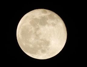 Photo: 昨夜は満月、しかも半影月食という珍しい夜でしたが、残念ながら月は厚い雲の向こう側でした。今日はきれいな月が見えました。十六夜の月。