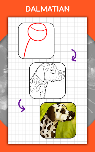 How to draw animals step by step, drawing lessons 1.3 Screenshots 19