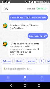 PIG - Bot Financiero - náhled