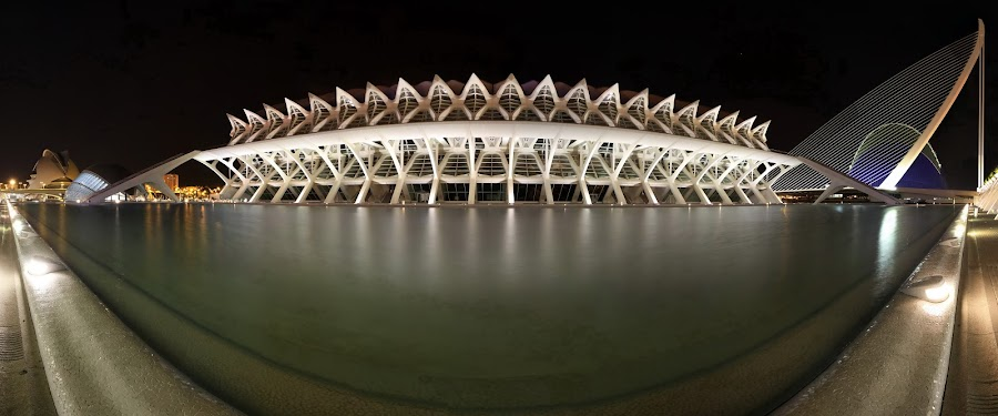 Valencia_008 by Emil Stojanov - Buildings & Architecture Bridges & Suspended Structures