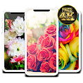Flowers HD Wallpapers : Colorful Flowers 4K APK