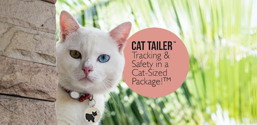 Приложения в Google Play – Cat Tailer