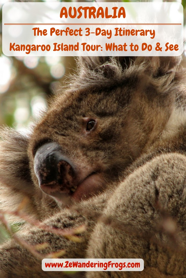 Australia Kangaroo Island Tour: 3-Day in Itinerary