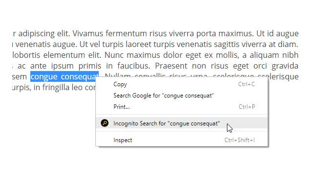 Incognito Search Plus