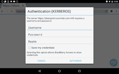 BlackBerry Access- screenshot thumbnail