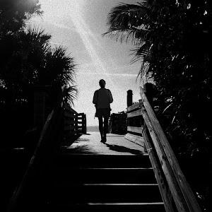 The walk.jpg