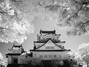 Photo: 佐々木