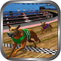 Crazy Real Dog Race: Greyhound Racing Game icon
