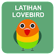 Download Latihan Suara Lovebird For PC Windows and Mac