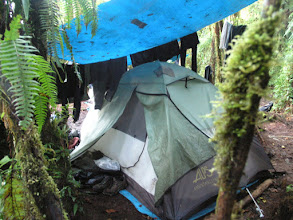 Photo: Camping in the cloud forest - the blue tarp keeps the rain off and provides a place to hang up wet clothes