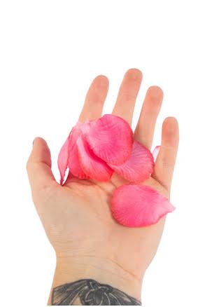 Rosenblad, rosa
