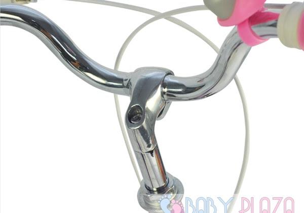 Xe đạp RoyalBaby RB-19 10